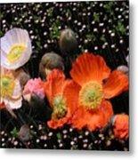 Flower Line Dance Metal Print