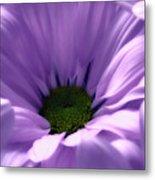 Flower Macro Beauty 4 Metal Print