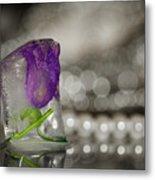 Flower Of Ice Metal Print