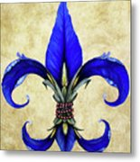 Flower Of New Orleans Blue Iris Metal Print