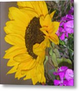 Flower Of The Sun And Friends Metal Print