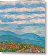 Flower Path To The Blue Ridge Metal Print