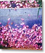 Flower Petals Saturated Ae Metal Print