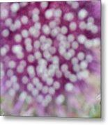 Flower Photograph2  Metal Print