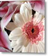 Flower Pink-white Metal Print