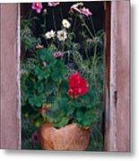 Flower Pot In Window Metal Print