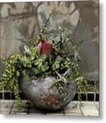 Flower Pot Metal Print by Viktor Savchenko