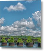 Flower Pots2 Metal Print