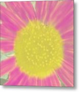 Flower Power. Metal Print
