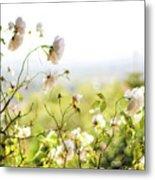 Flower Valley Metal Print