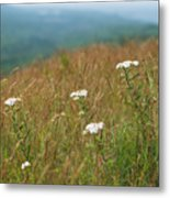 Flower View Of Mountains Metal Print
