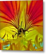 Make Your Own Wings And Fly Away Metal Print
