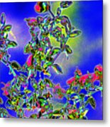 Flowering Brittle Bush In An Altered State Metal Print