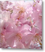 Flowering Tree Art Prints Spring Pink Blossom Flowers Baslee Metal Print