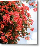 Flowering Tree Metal Print