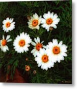 Flowering Yew Metal Print