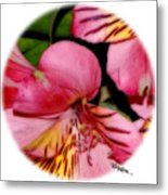 Flowers # 8728_2 Metal Print