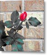 Flowers And Bricks Metal Print