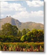 Flowers And Two Trees Metal Print
