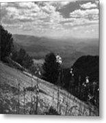 Flowers At Table Rock Overlook In Black And White Two Metal Print