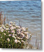 Flowers At The Lake Metal Print