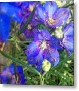 Flowers Blooming Metal Print