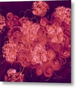 Flowers, Buttons And Ribbons -shades Of Burbundy Rose Metal Print