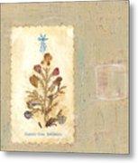 Flowers From Bethlehem  Metal Print