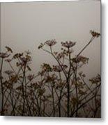 Flowers In California Fog Metal Print