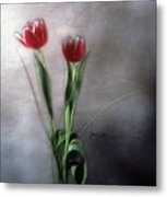 Flowers In Light Metal Print