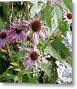 Flowers In The Park Metal Print