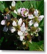 Flowers Of Berries Metal Print
