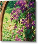 Flowers On Vine  Metal Print