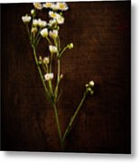 Flowers On Wood Metal Print