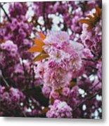 Leeds Pink Flower Metal Print