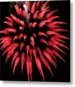 Flowerworks #31 Metal Print
