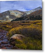 Flowing From Bierstadt Metal Print by Barbara Schultheis
