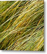Flowing Green Grass  Abstract Metal Print