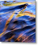 Flowing Water In Fall Metal Print