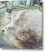 Fluf And Mouse Metal Print