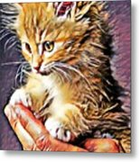 Fluffy Orange Kitten Metal Print