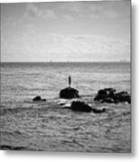 Fluid Solitude Metal Print