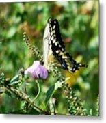 Flutter By 102110 Metal Print