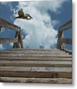 Fly By At The Beach - Brown Pelican And Rustic Stairs Metal Print