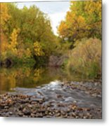 Fly Fishermans Paradise Metal Print