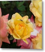 Fly On The Roses Metal Print by Terry  Wiley