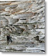 Fly On Wood Metal Print