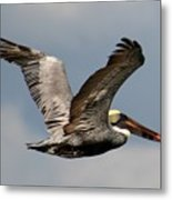 Flying Art Metal Print