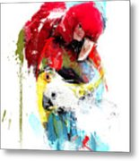 Flying Colors Metal Print