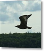 Flying Ephraim Wi Metal Print